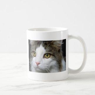 Catty Coffee Mug