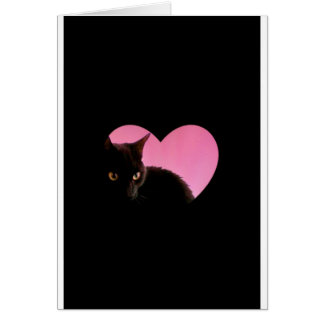 Catty Valentines Card