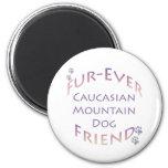 Caucasian Mountain Dog Furever Magnets