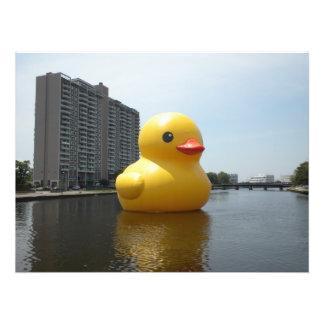 Caucho Ducky Impresiones Fotográficas