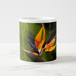 caudata large coffee mug