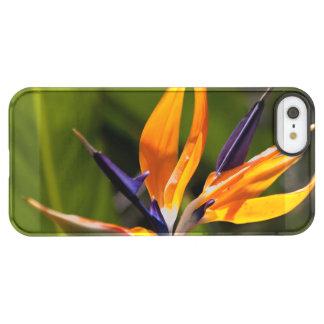 caudata permafrost® iPhone SE/5/5s case