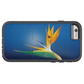 caudata tough xtreme iPhone 6 case