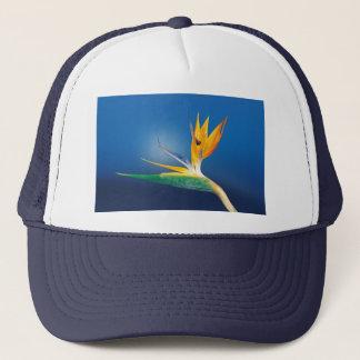 caudata trucker hat