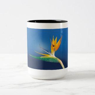caudata Two-Tone coffee mug