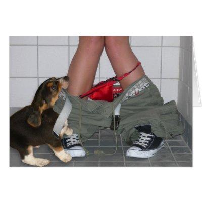 Собачий гамбитъ
