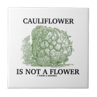 Cauliflower Is Not A Flower (Food For Thought) Small Square Tile