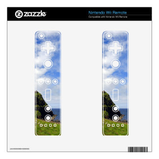 Causeway Coastline Decal For The Wii Remote