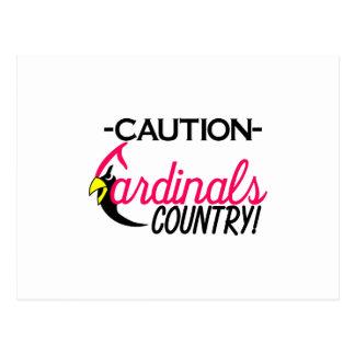 Caution Cardinals Postcard