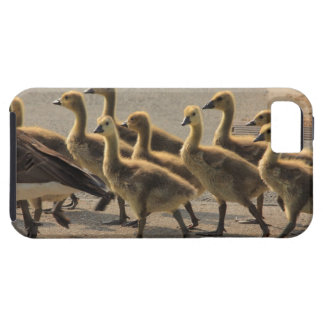 Caution crossing the street iPhone 5 covers