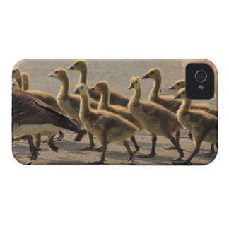 Caution crossing the street iPhone 4 cover