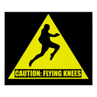 Caution Flying Knees MMA Muay Thai Poster