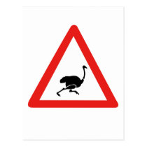 Caution Ostriches 1, Traffic Warning Sign, Namibia Postcard