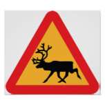 Caution Reindeer Swedish Traffic Sign Posters