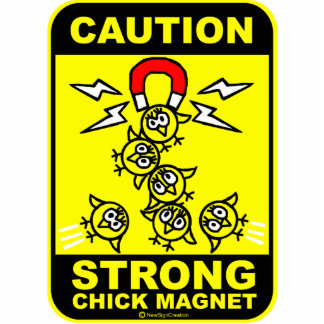 Caution strong chick magnet photo cut out