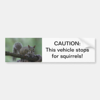Caution: this vehicle stops for squirrels bumper sticker