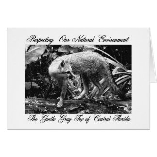 CAUTIOUS FOX GREETING CARDS