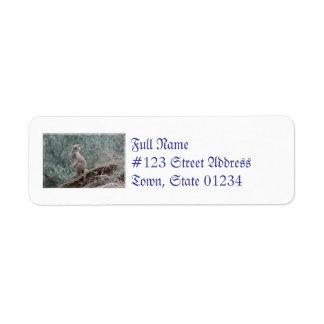 Cautious Meerkat Return Address Label