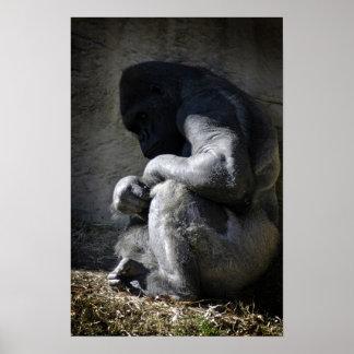 Cautivo - gorila del Silverback por la foto de DAr Impresiones