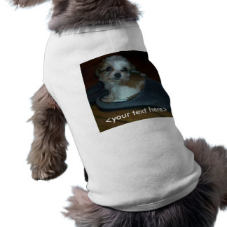Cavachon puppy in a slipper <your text here> shirt