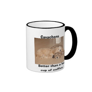 Cavachons better than a hot cup of coffee mugs