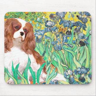 Cavalier 2 (Bl) - Irises Mouse Pad