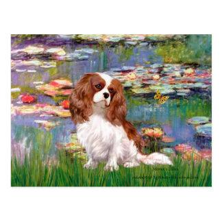 Cavalier 2 (bl) - Lilies 2 Postcards