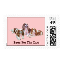 Cavalier Charles Spaniel Breast Cancer Postage
