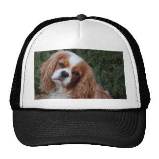 Cavalier Fond Memories Trucker Hat