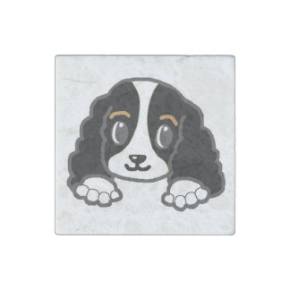 cavalier kcs peeking black and white stone magnet