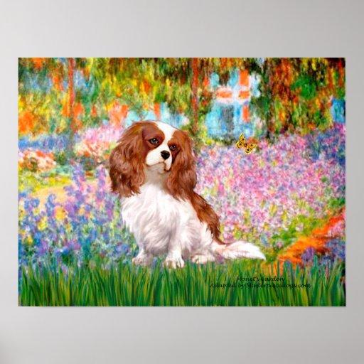 Cavalier King Charles (Blenheim) - Garden Poster