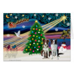Cavalier King Charles Border Collies (two) Card