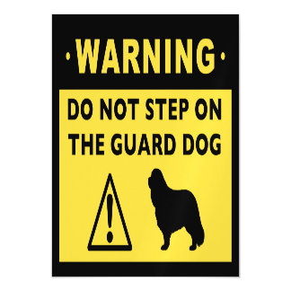 Cavalier King Charles Funny Guard Dog Warning Magnetic Card