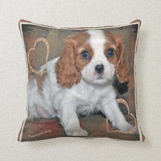 Cavalier King Charles Love Pillow