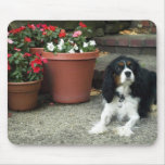 Cavalier King Charles Puppy Dog w/ Flowers Mousepad