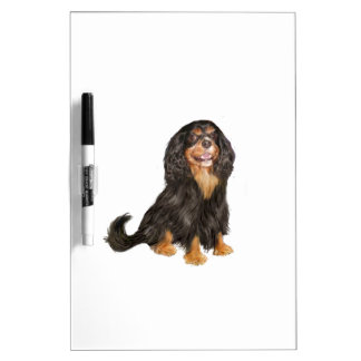Cavalier King Charles (R) - Black and tan.png Dry-Erase Board