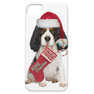 Cavalier King Charles Sandy Canes iPhone 5 Case