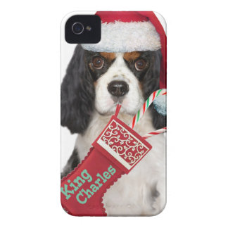 Cavalier King Charles Sandy Canes iPhone4 Case