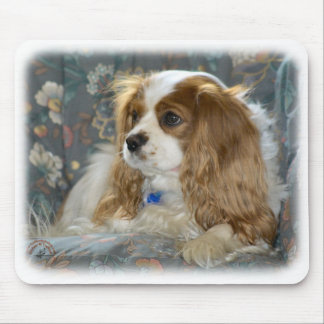 Cavalier King Charles Spaniel 8R16D-01 Mouse Pad