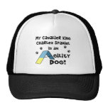 Cavalier King Charles Spaniel Agility Dog Hat