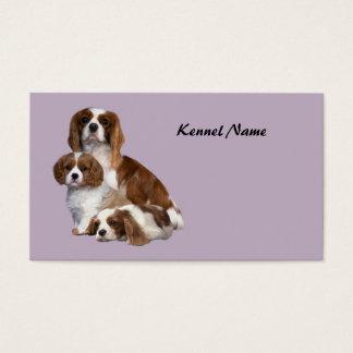 Cavalier King Charles Spaniel Breeder Business Car Business Card