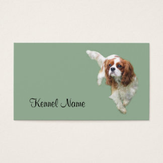 Cavalier King Charles Spaniel Breeder Business Car Business Card