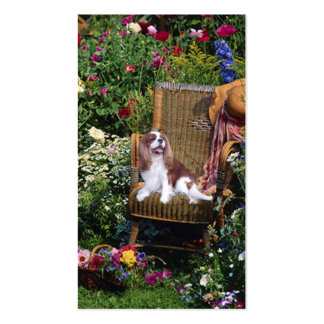 Cavalier King Charles Spaniel BreederBusiness Card Double-Sided Standard Business Cards (Pack Of 100)