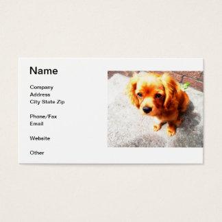 Cavalier King Charles Spaniel Business Card
