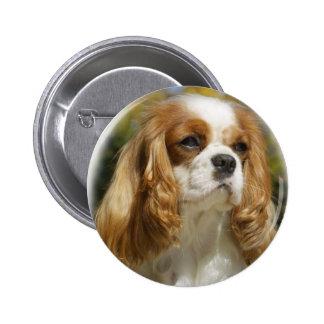 Cavalier King Charles Spaniel Button