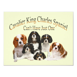 """Cavalier King Charles Spaniel Can't Have Just One 4.25"""" X 5.5"""" Invitation Card"""