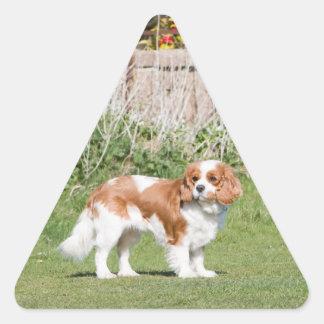 Cavalier King Charles Spaniel dog beautiful photo Triangle Sticker