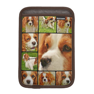 Cavalier King Charles Spaniel Dog iPad Mini Sleeve