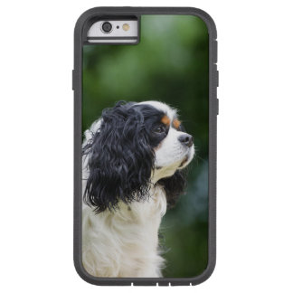 Cavalier King Charles Spaniel dog lovers photo Tough Xtreme iPhone 6 Case