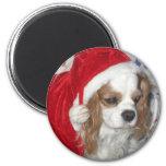 CAVALIER KING CHARLES SPANIEL DOG WITH SANTA HAT 2 INCH ROUND MAGNET